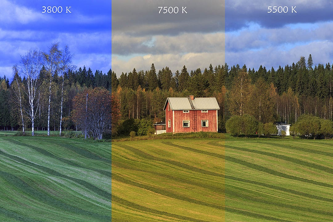 White Balance - How to shoot video like a pro and make your brand benefit more.